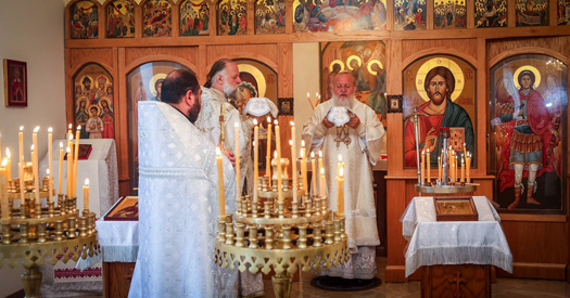 Church feast, with His Eminence Metropolitan Hilarion serving